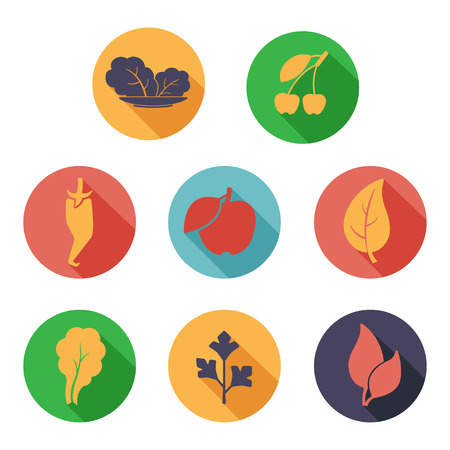 Vector illustration Leaves, fruit and vegetables icons. Flat style Vector