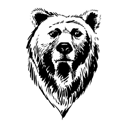 Vector illustration Marker hand-drawn forest animals: bear Vettoriali