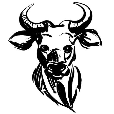 animales del bosque: Ilustraci�n vectorial de marcador animales del bosque a mano toro