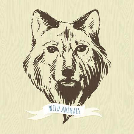 animales del bosque: Ilustraci�n vectorial de marcador animales del bosque a mano lobo Vectores