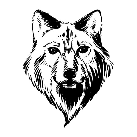 engraved: Vector illustration Marker hand-drawn forest animals: wolf