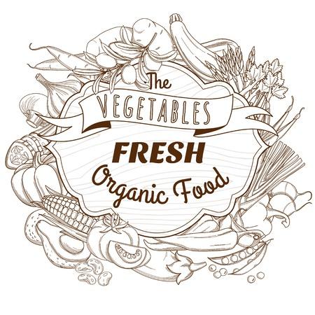 Vector illustration Outline hand drawn sketch vegetable wooden frame flat style, thin  line