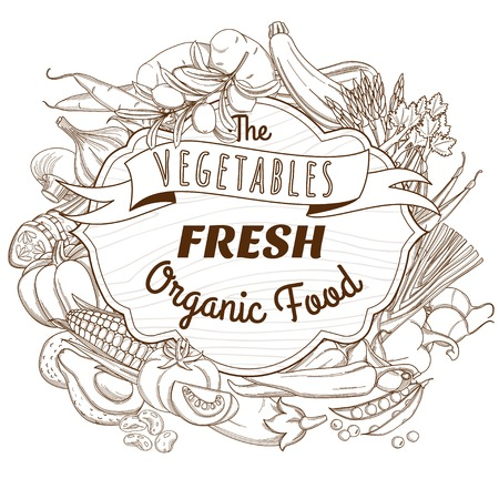 Vector illustration Outline hand drawn sketch vegetable wooden frame flat style, thin  line Vector