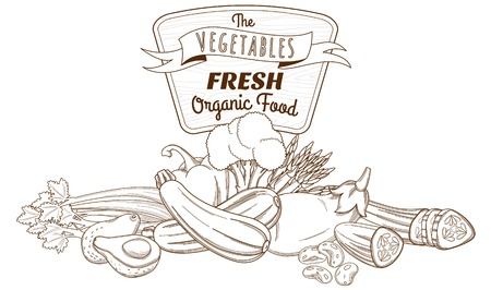 Vector illustration Outline hand drawn sketch vegetable still life composition (flat style, thin  line) Vector