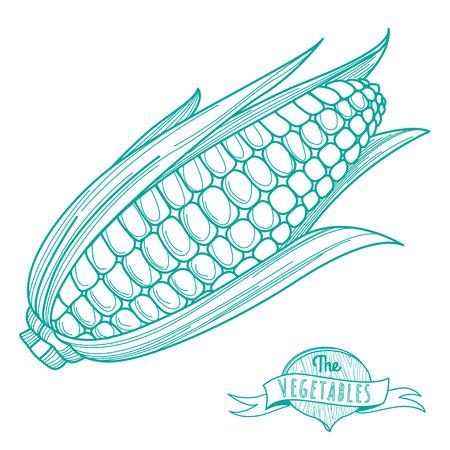 Vector illustratie Schets hand getekende schets van maïskolf (vlakke stijl, dunne lijn) Stock Illustratie