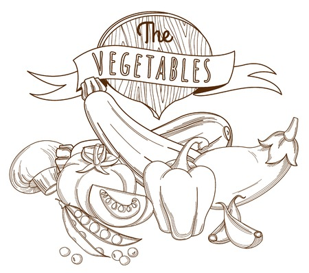 eat healthy: Vector illustration Outline hand drawn sketch vegetable still life flat style, thin  line