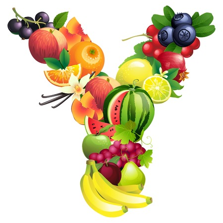 fonts 3d: Vector illustration Letter Y composed of different fruits with leaves