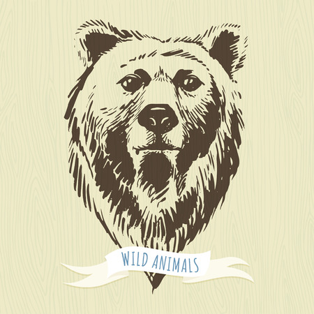bear silhouette: Vector illustration Marker hand-drawn forest animals: bear Illustration