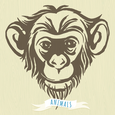 Vector illustration  Hand drawn portrait of  monkey chimpanzee.