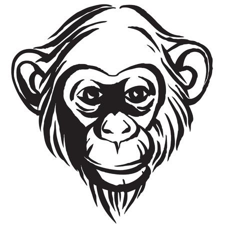 Vector illustration Hand drawn portrait of  monkey chimpanzee. Black and white
