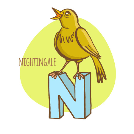 letter art: Vector illustration  Funny zoo animals kids alphabet. Hand drawn ink colorful style. Letter N, nightingale