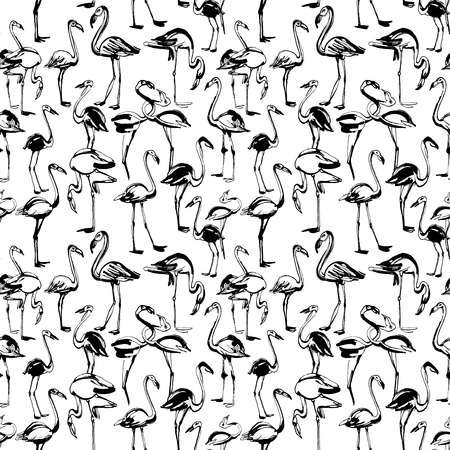 exotic birds: Vector illustration  Tropical exotic birds flamingos summer seamless pattern. Black and white Illustration