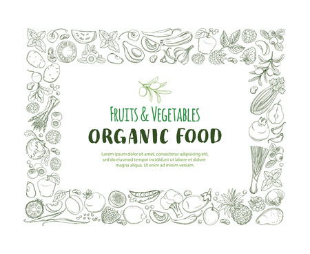 Rectangle Frame border pattern of groceries organic farm fresh fruits and vegetables on white background. Illustration