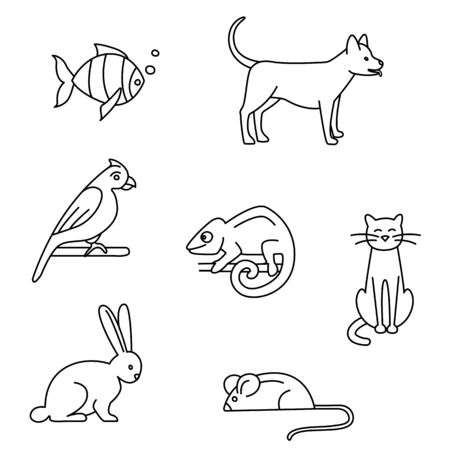 Pet store dogs, cats, birds, rabbit, parrot, fish, mouse, chameleon set black and white. Vector illustration doodles, set of pet shop goods in thin line art sketch style