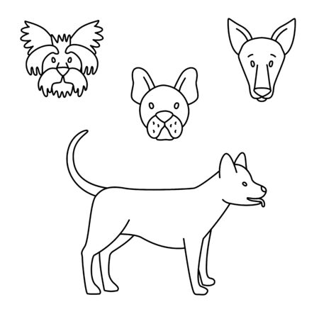 Breeds of dogs set black and white. Vector illustration doodles, set of pet shop goods in thin line art sketch style Ilustrace