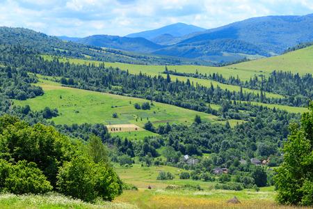 mountain landscape: Green mountain landscape. Ukrainian Carpathians