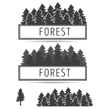 firtrees: emblem of fir-trees.  a background with the wood for ornament,  illustration
