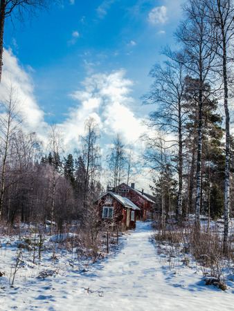 Two houses in winter forest on a clear, sunny day. Banco de Imagens