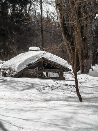 Old ruined house in the winter forest covered with snow.