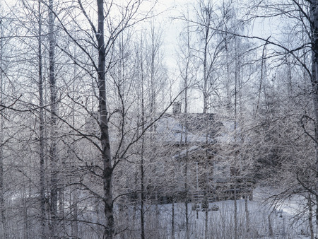 The house in the winter, snow forest, frosty morning. photo