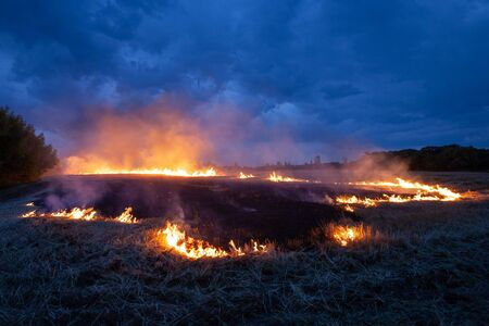 Evening fire on a field with dry grass. Dry wheat burns at night. Thunderclouds in the background.