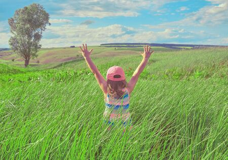 Little girl with arms outstretched in field. Small girl stands in the field, view from the back.