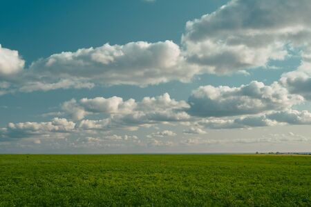 Fresh and beautiful Summer Landscape - cyan sky and green grass. Field, sky and puffy clouds. Samara, Russia Stock Photo