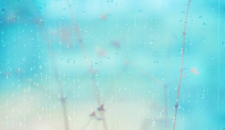 Glass wet autumn background, rain in the park glass wet surface, rain drops on the drenched window glass. Autumnal rainy landscape blurred.