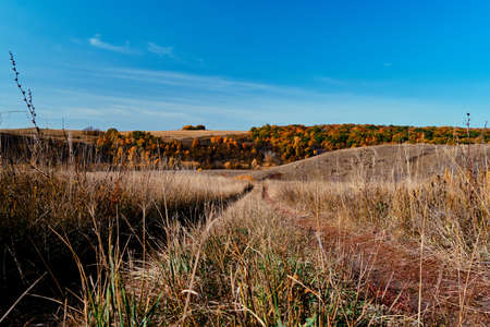 Panoramic landscape of central Russia agricultural countryside with hills and country road. Autumn landscape of the Samara valleys. Russian countryside.