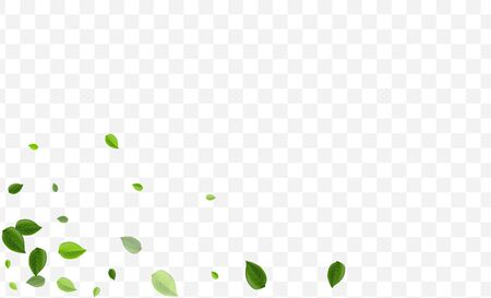 Swamp Foliage Vector Illustration. Lime Leaves Nature Banner. Organic Backdrop. Forest Greens Realistic Pattern.
