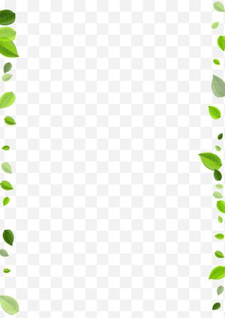 Green Leaves Vector Pattern. Forest Leaf Tree Brochure. Motion Illustration. Swamp Greens Fresh Background.