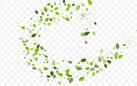 Mint Foliage Vector Concept. Green Leaf Flying Poster. Forest Border. Grassy Leaves Fresh Template. Ilustração