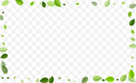 Forest Leaves Vector Design. Green Leaf Tree Plant. Flying Branch. Grassy Foliage Realistic Brochure.