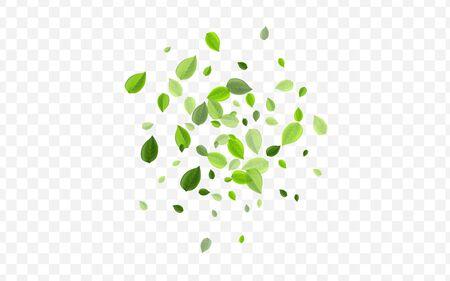 Grassy Greens Vector Concept. Lime Leaves Forest Wallpaper. Fresh Pattern. Swamp Leaf Swirl Poster.