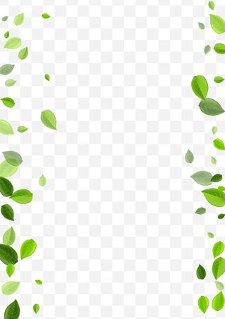 Grassy Leaves Vector Template. Forest Leaf Blur Branch. Motion Banner. Olive Foliage Ecology Poster.