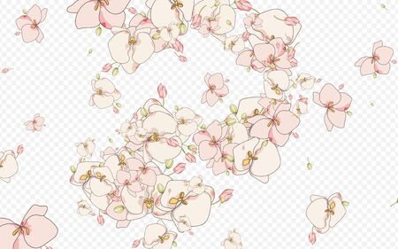 Purple Orchid Summer Vector Transparent Background. Isolated Floral Print. Color Branch Drawn Artwork. Flower Hand Paper.