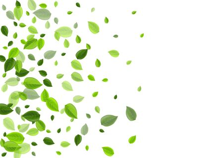 Forest Greens Abstract Vector Concept. Motion Leaf Plant. Green Leaves Tea Banner. Foliage Organic Pattern.