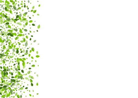 Lime Leaves Realistic Vector Illustration. Falling Greens Backdrop. Olive Leaf Fresh Pattern. Foliage Fly Plant.