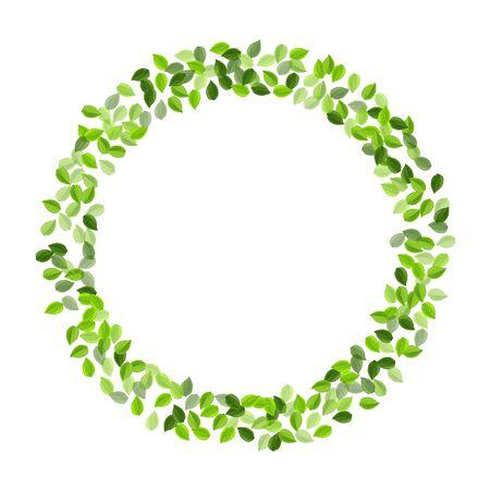 Green Foliage Organic Vector Brochure. Nature Leaves Background. Olive Leaf Forest Backdrop. Greens Spring Plant. Ilustração