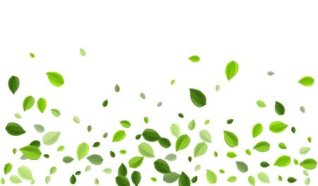 Grassy Greens Falling Vector Background. Wind Foliage Concept. Lime Leaf Motion Illustration. Leaves Abstract Design. Vettoriali