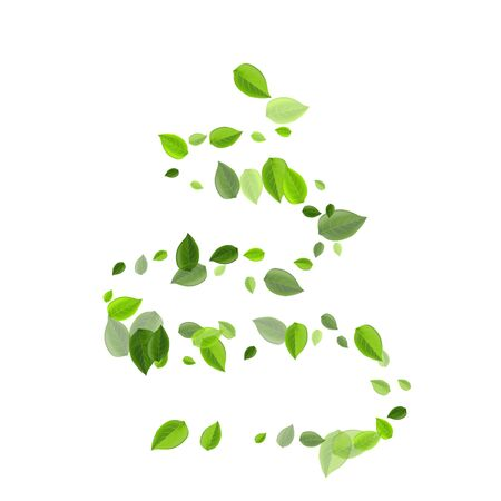 Forest Greens Fly Vector Concept. Tree Leaf Pattern. Olive Leaves Herbal Branch. Foliage Ecology Wallpaper.