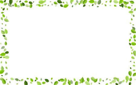 Green Leaves Falling Vector Wallpaper. Spring Foliage Poster. Lime Leaf Blur Illustration. Greens Ecology Branch. Ilustração