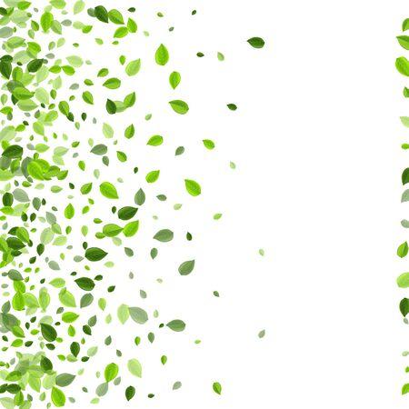 Olive Foliage Blur Vector Backdrop. Falling Leaves Template. Forest Leaf Transparent Wallpaper. Greens Organic Branch.