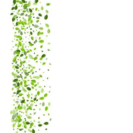 Olive Greens Transparent Vector Concept. Falling Foliage Poster. Grassy Leaf Flying Border. Leaves Blur Backdrop.