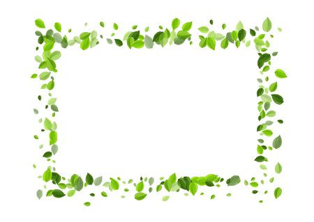 Lime Foliage Flying Vector Border. Fresh Leaf Concept. Grassy Greens Fly Brochure. Leaves Organic Poster.
