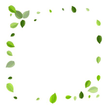 Grassy Foliage Flying Vector Concept. Wind Leaves Branch. Swamp Leaf Tree Brochure. Greens Realistic Wallpaper.