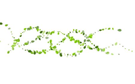 Green Greens Spring Vector Background. Fly Leaf Design. Lime Leaves Falling Wallpaper. Foliage Nature Concept.