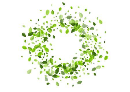 Forest Foliage Blur Vector Plant. Fresh Greens Brochure. Olive Leaves Herbal Backdrop. Leaf Spring Design.