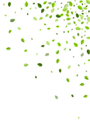 Green Leaves Tree Vector Background. Abstract Foliage Branch. Lime Leaf Blur Banner. Greens Wind Border.