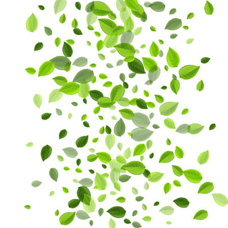 Forest Greens Abstract Vector Illustration. Nature Leaf Pattern. Grassy Leaves Organic Background. Foliage Swirl Plant.